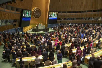 India slams Security Council for 'undermining' UN General Assembly's authority