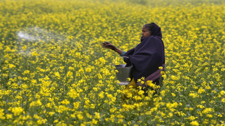 From farms to slums, Indian women at sharp end of jobs crisis