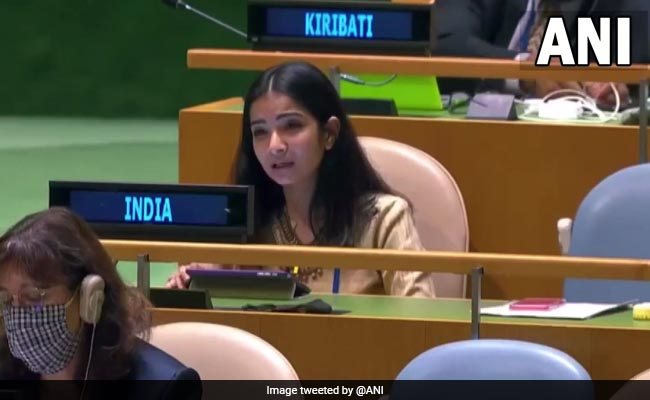 Pak Globally Recognised For Openly Supporting Terrorists: India At UN